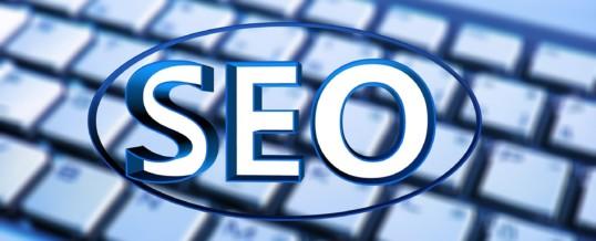 SEO Company Santa Rosa | Assembling Your Website Business Using An SEO Professional