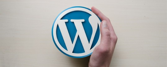WordPress Design Sonoma County | What Exactly Can WordPress Plugins Do For You?